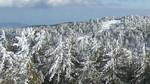В Троодосе сложились не благоприятные погодные условия